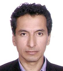 Ph.D. Nelson Eduardo Castillo Ayala Coordinador Área Gene Cvlac · nelson.castillo@uptc.edu.co - nelson_castillo